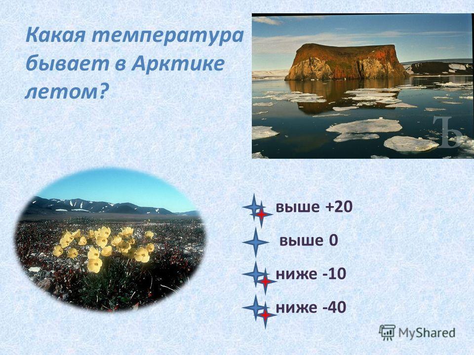 Какая температура бывает в Арктике летом? выше +20 выше 0 ниже -10 ниже -40