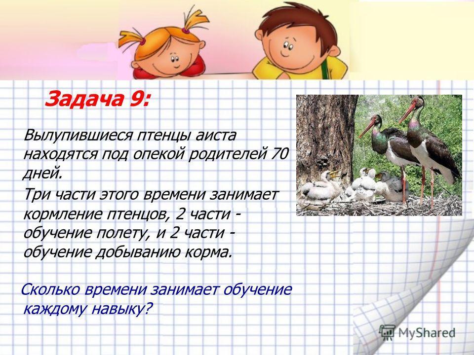 Задача 9: Вылупившиеся птенцы аиста находятся под опекой родителей 70 дней. Три части этого времени занимает кормление птенцов, 2 части - обучение полету, и 2 части - обучение добыванию корма. Сколько времени занимает обучение каждому навыку?