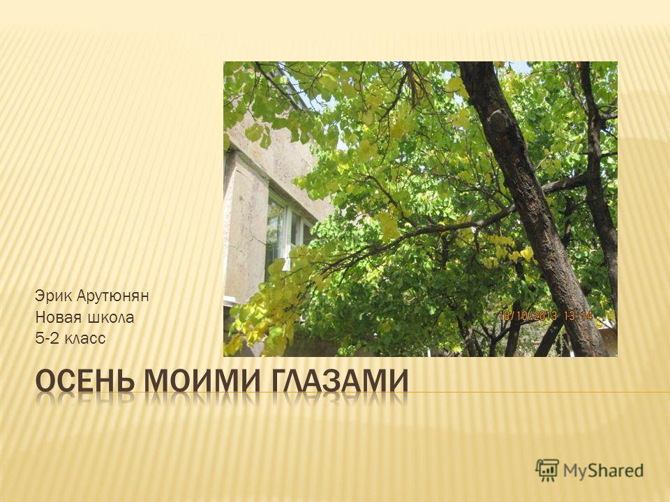 Эрик Арутюнян Новая школа 5-2 класс