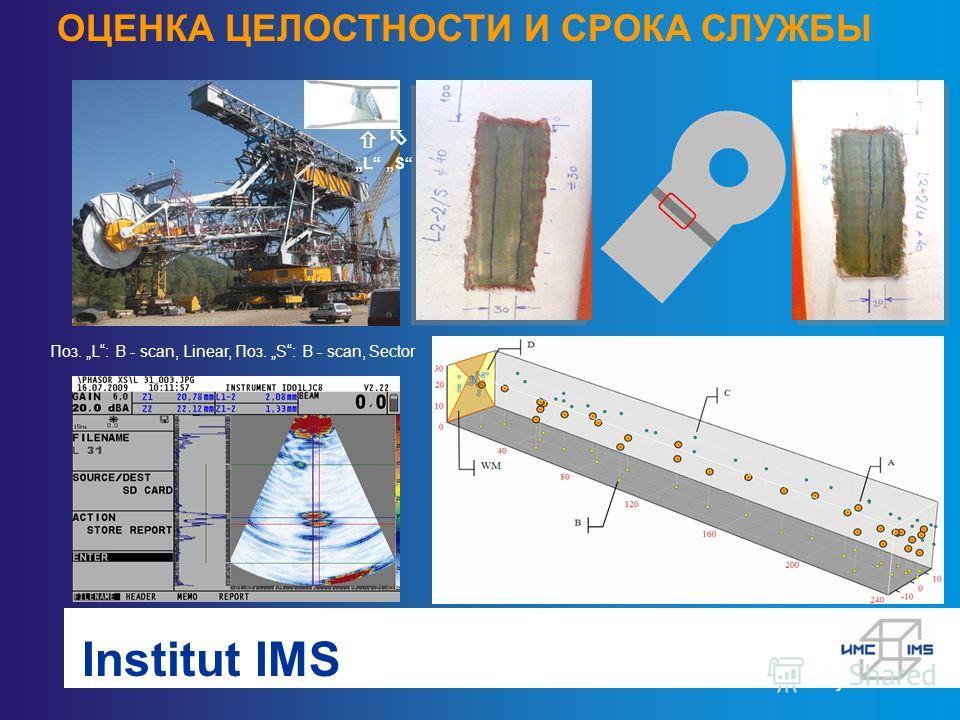 Institut IMS ОЦЕНКА ЦЕЛОСТНОСТИ И СРОКА СЛУЖБЫ L S Поз. L: B - scan, Linear, Поз. S: B - scan, Sector