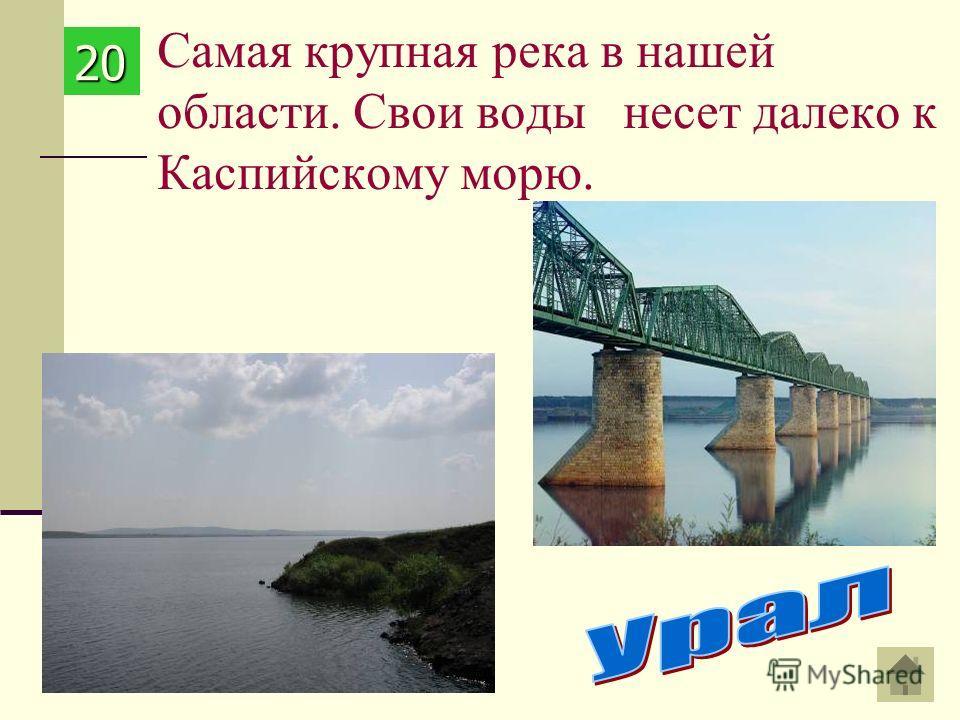 Самая крупная река в нашей области. Свои воды несет далеко к Каспийскому морю. 20202020