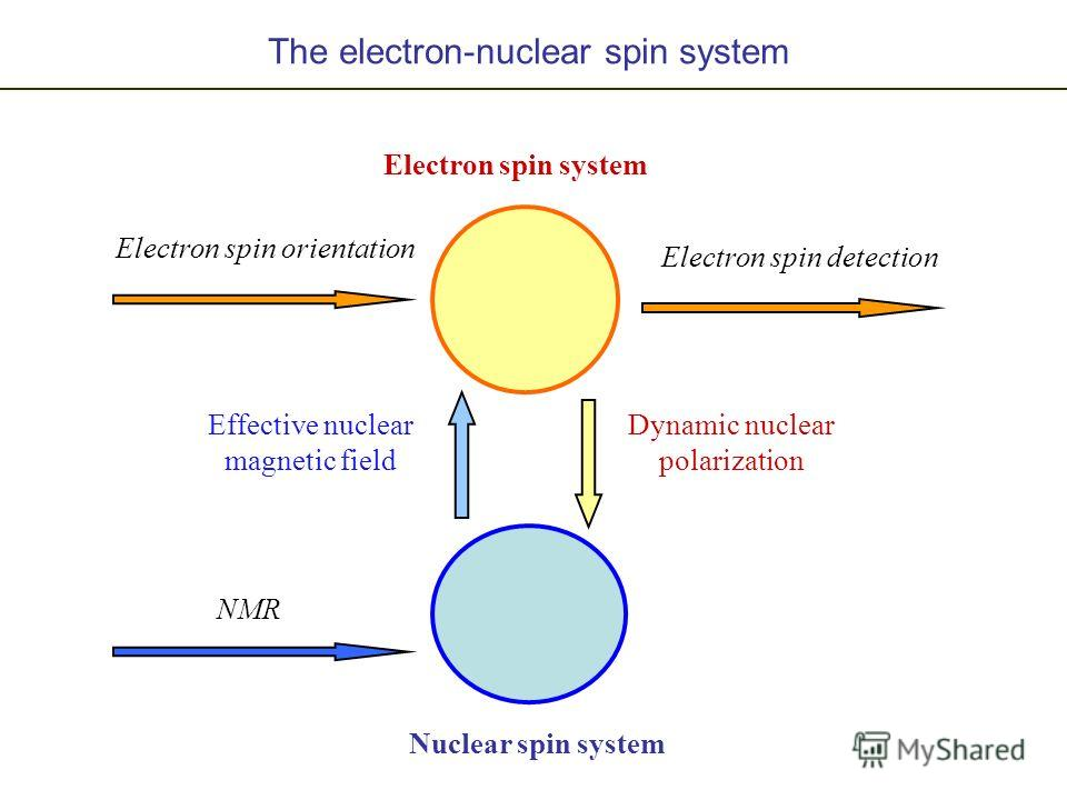 Electron spin system Nuclear spin system Effective nuclear magnetic field Dynamic nuclear polarization The electron-nuclear spin system Electron spin orientation Electron spin detection NMR