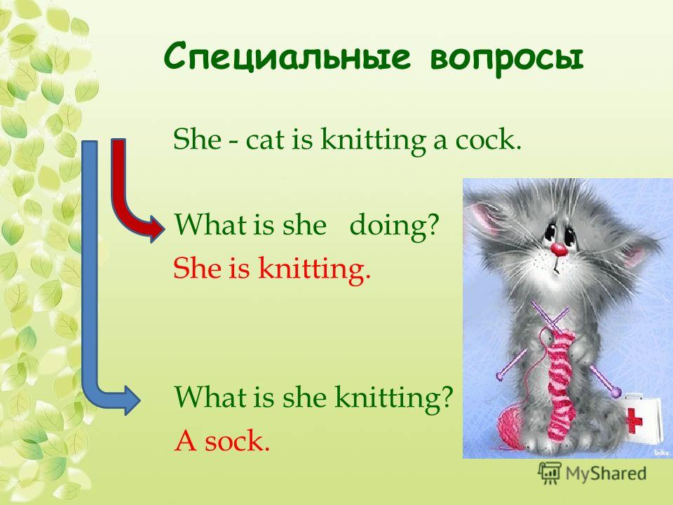 Специальные вопросы She - cat is knitting a cock. What is she doing? She is knitting. What is she knitting? A sock.