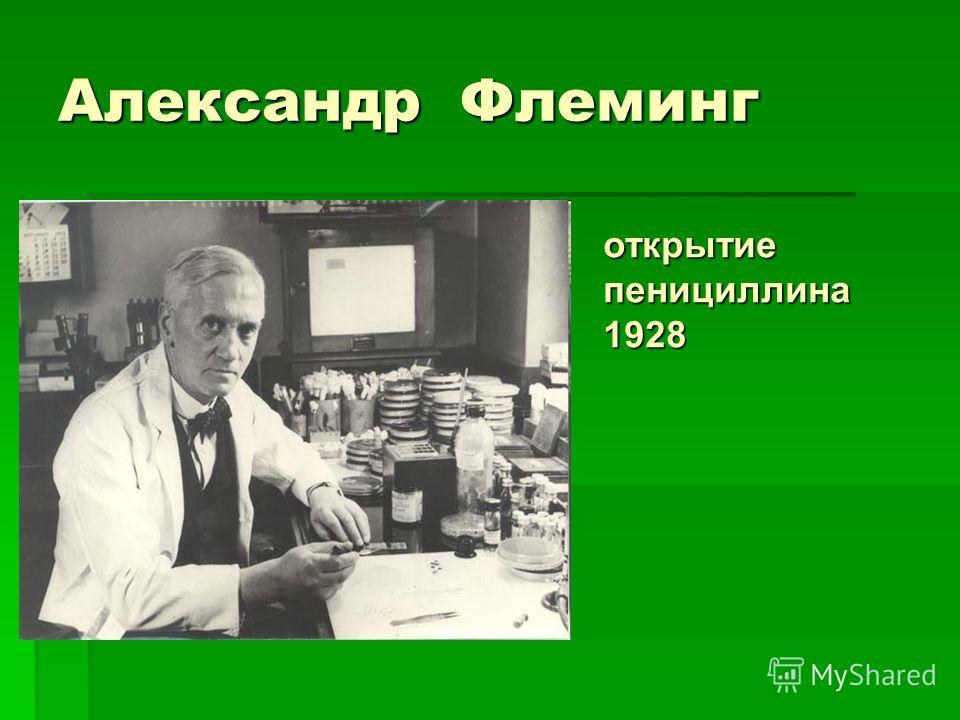 Александр Флеминг открытие пенициллина 1928