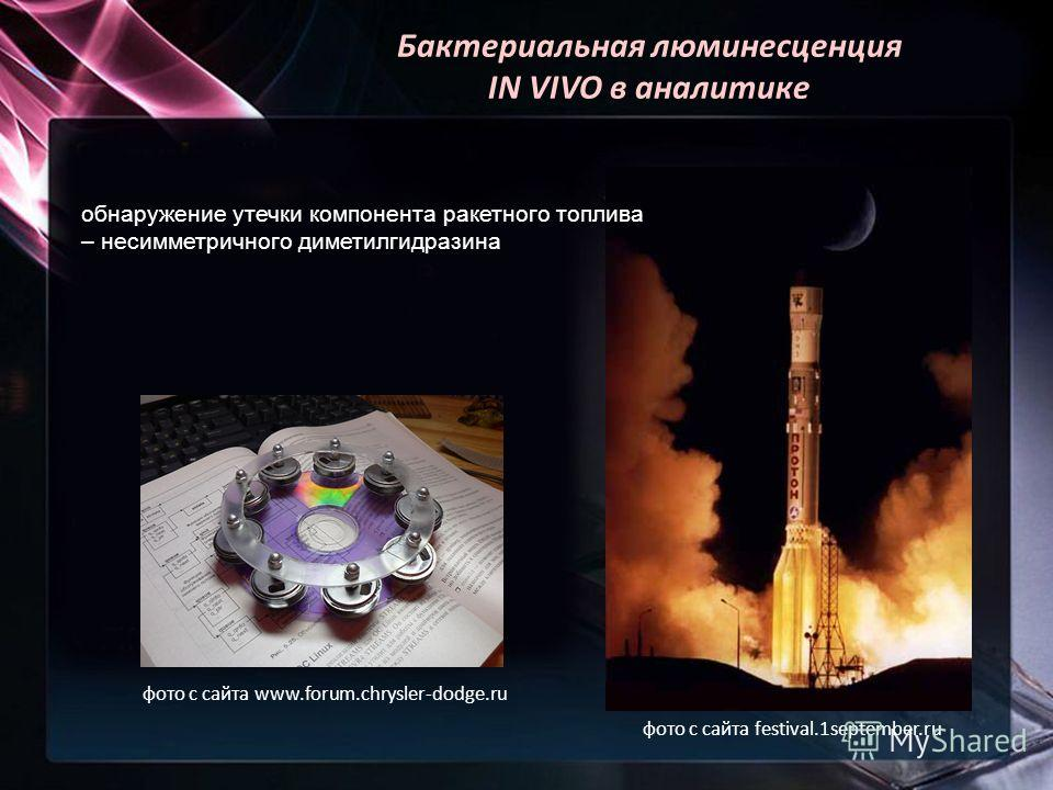 Бактериальная люминесценция IN VIVO в аналитике обнаружение утечки компонента ракетного топлива – несимметричного диметилгидразина фото с сайта www.forum.chrysler-dodge.ru фото с сайта festival.1september.ru