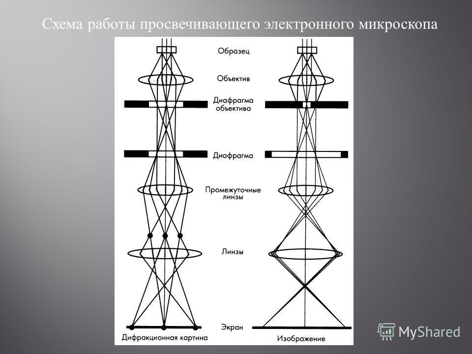 Схема работы просвечивающего электронного микроскопа