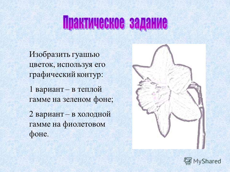 Изобразить гуашью цветок, используя его графический контур: 1 вариант – в теплой гамме на зеленом фоне; 2 вариант – в холодной гамме на фиолетовом фоне.