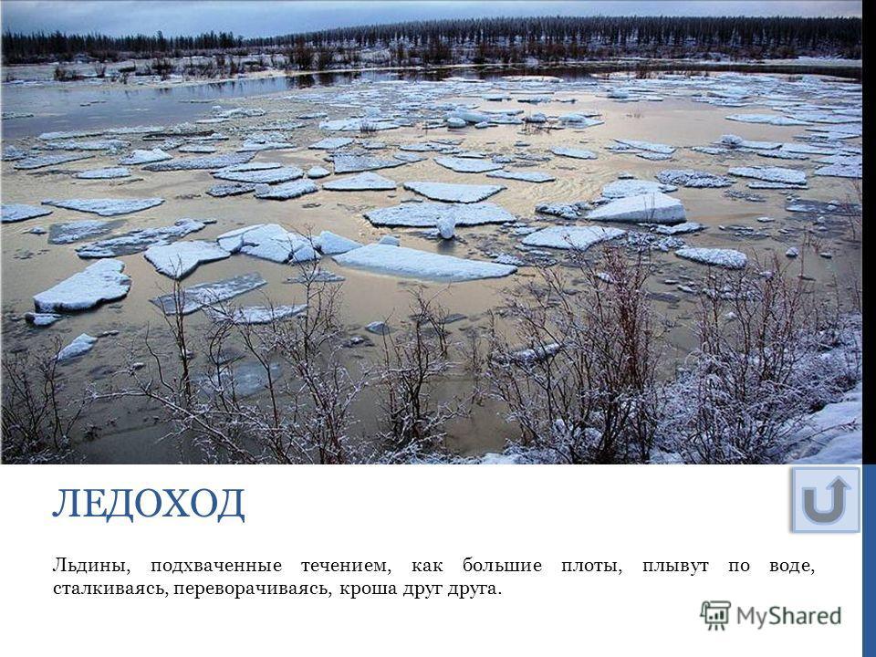Льдины, подхваченные течением, как большие плоты, плывут по воде, сталкиваясь, переворачиваясь, кроша друг друга. ЛЕДОХОД
