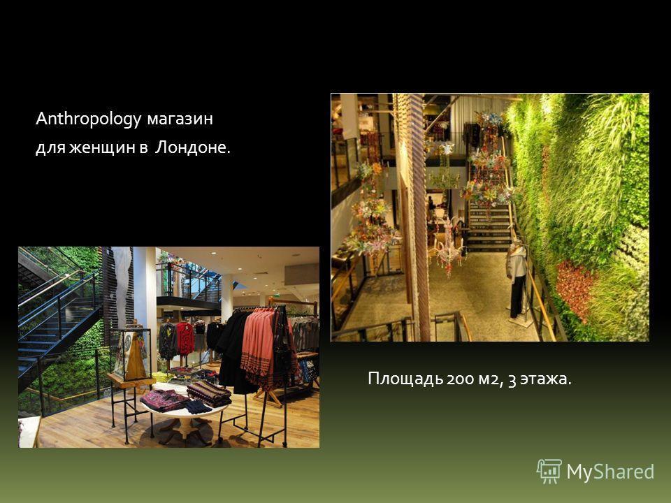 Anthropology магазин для женщин в Лондоне. Площадь 200 м2, 3 этажа.