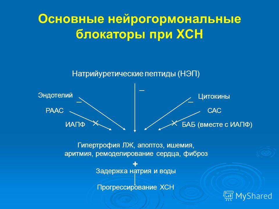 Основные нейрогормональные блокаторы при ХСН Натрийуретические пептиды (НЭП) Эндотелий Цитокины РААССАС ИАПФБАБ (вместе с ИАПФ) Гипертрофия ЛЖ, апоптоз, ишемия, аритмия, ремоделирование сердца, фиброз Задержка натрия и воды Прогрессирование ХСН +