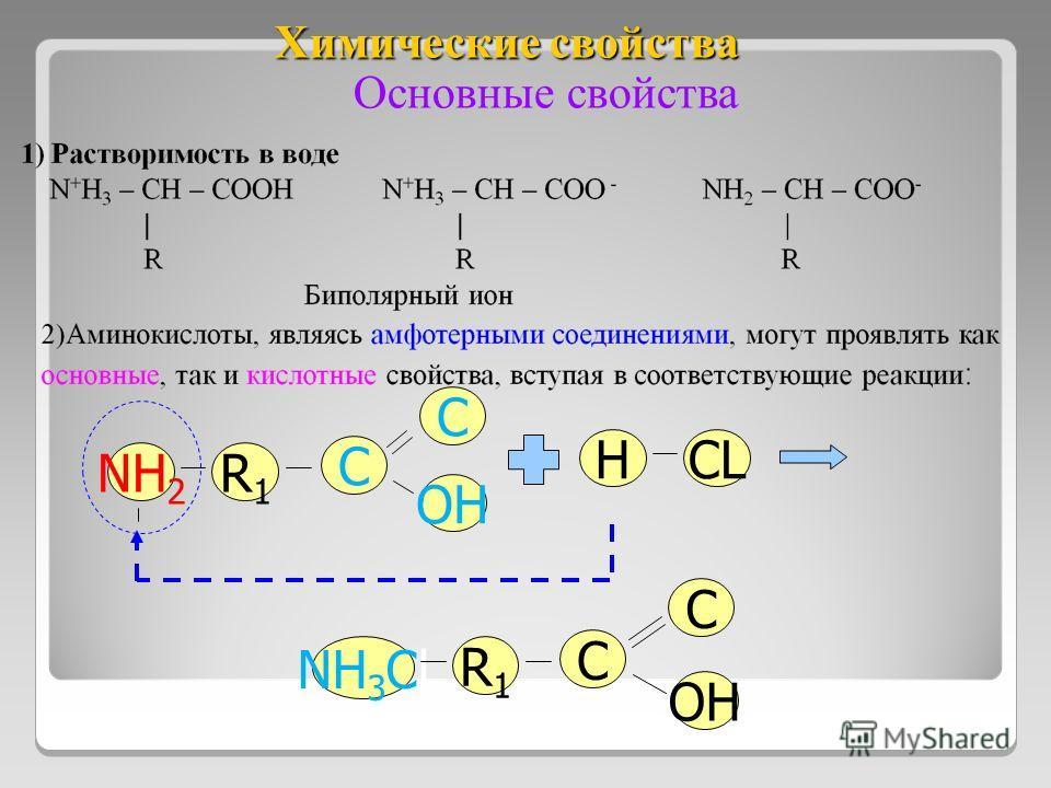 Химические свойства NH 2 R1R1 C OH C Основные свойства NH 3 Cl R1R1 C OH C HCL
