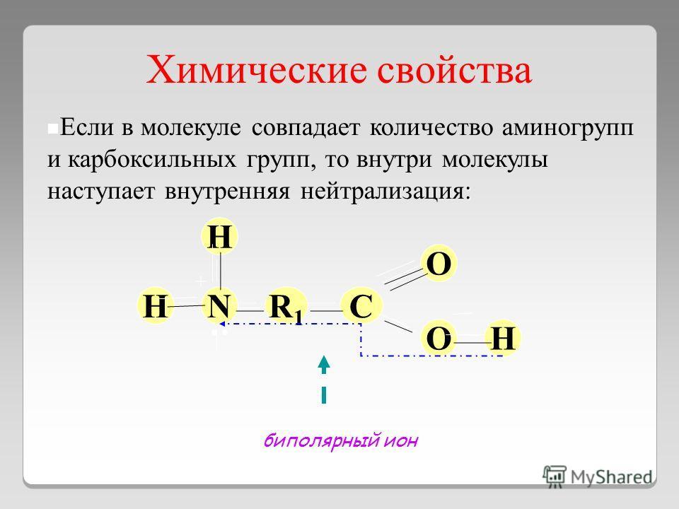 Химические свойства : Если в молекуле совпадает количество аминогрупп и карбоксильных групп, то внутри молекулы наступает внутренняя нейтрализация: NR1R1 C O O H H H биполярный ион