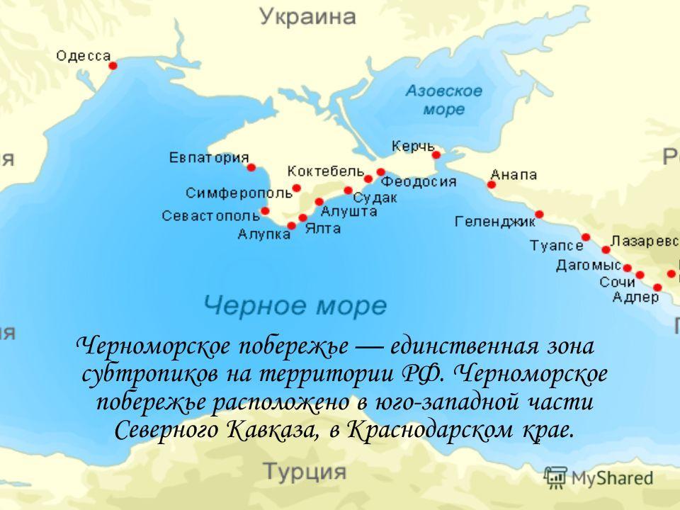 Черноморское побережье единственная зона субтропиков на территории РФ. Черноморское побережье расположено в юго-западной части Северного Кавказа, в Краснодарском крае.