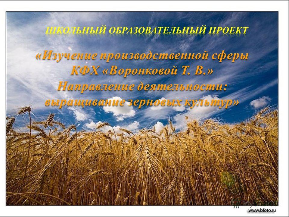 «Изучение производственной сферы КФХ «Воронковой Т. В.» Направление деятельности: выращивание зерновых культур»