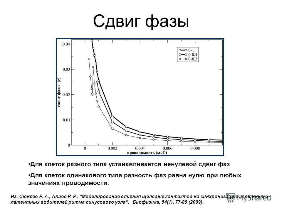 Сдвиг фазы Для клеток разного типа устанавливается ненулевой сдвиг фаз Для клеток одинакового типа разность фаз равна нулю при любых значениях проводимости. Из: Сюняев Р. А., Алиев Р. Р., Моделирование влияния щелевых контактов на синхронизацию истин