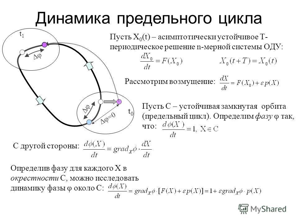 Δφ Δφ=0 Δφ t0t0 t1t1 Динамика предельного цикла Пусть X 0 (t) – асимптотически устойчивое Т- периодическое решение n мерной системы ОДУ: Рассмотрим возмущение: Пусть С – устойчивая замкнутая орбита (предельный цикл). Определим фазу φ так, что: С друг