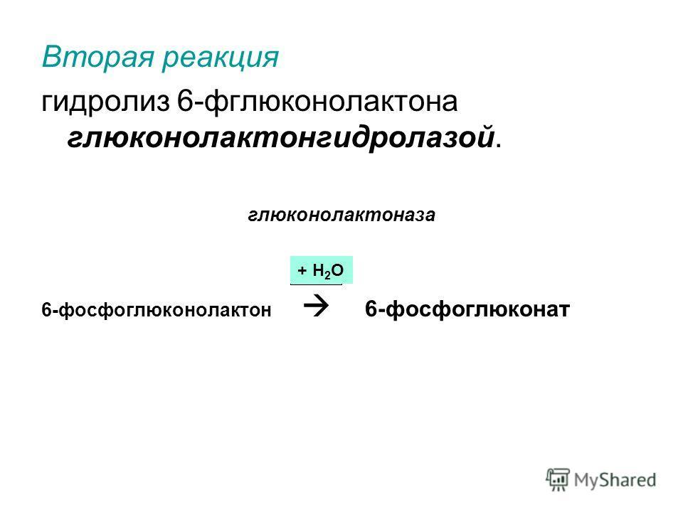 Вторая реакция гидролиз 6-фглюконолактона глюконолактонгидролазой. глюконолактоназа 6-фосфоглюконолактон 6-фосфоглюконат + Н 2 О