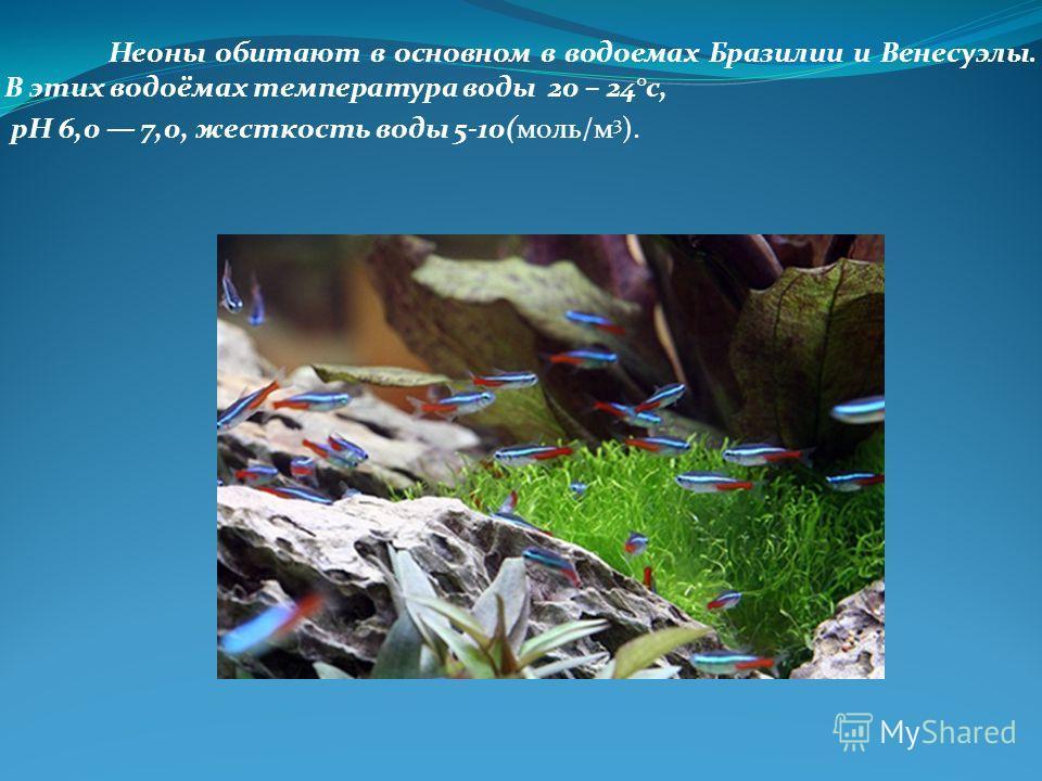 Неоны обитают в основном в водоемах Бразилии и Венесуэлы. В этих водоёмах температура воды 20 – 24°с, pH 6,0 7,0, жесткость воды 5-10(моль/м 3 ).