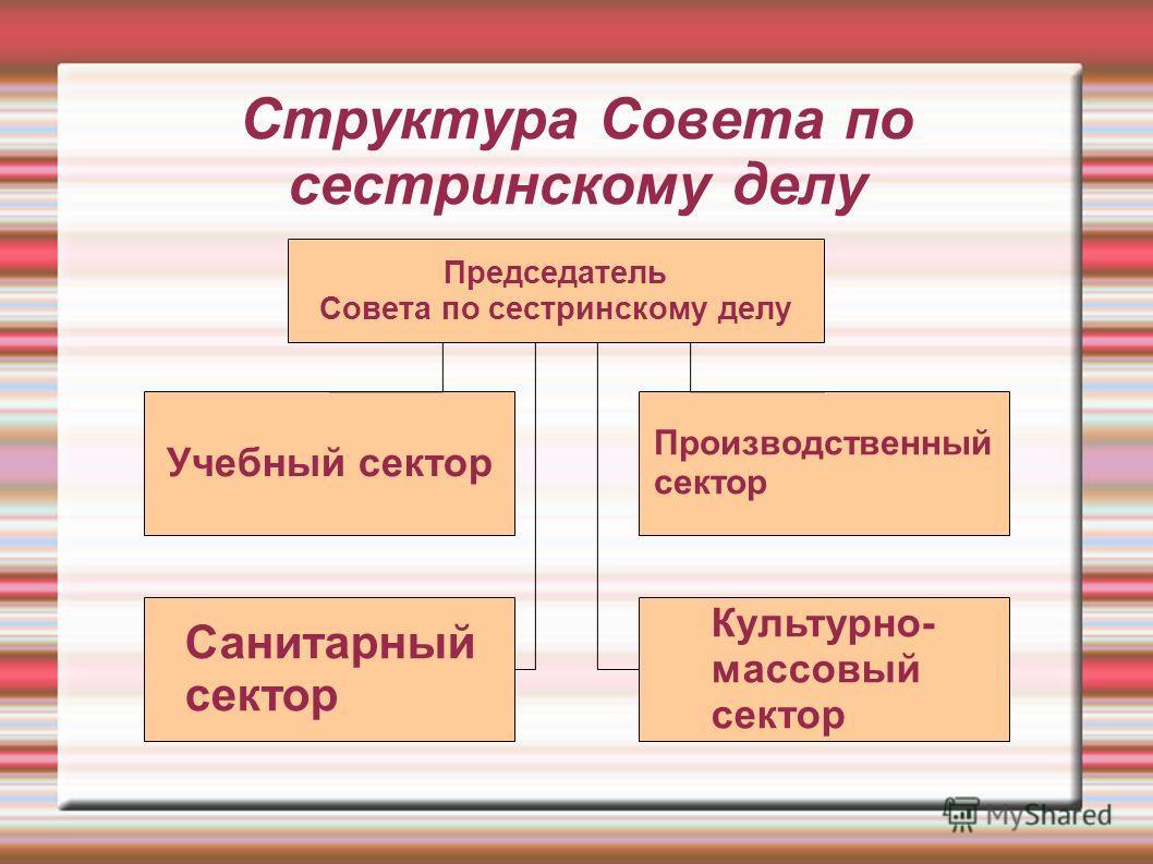 Структура Совета по сестринскому делу Председатель Совета по сестринскому делу Учебный сектор Санитарный сектор Производственный сектор Культурно- массовый сектор