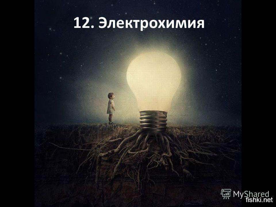 12. Электрохимия fishki.net