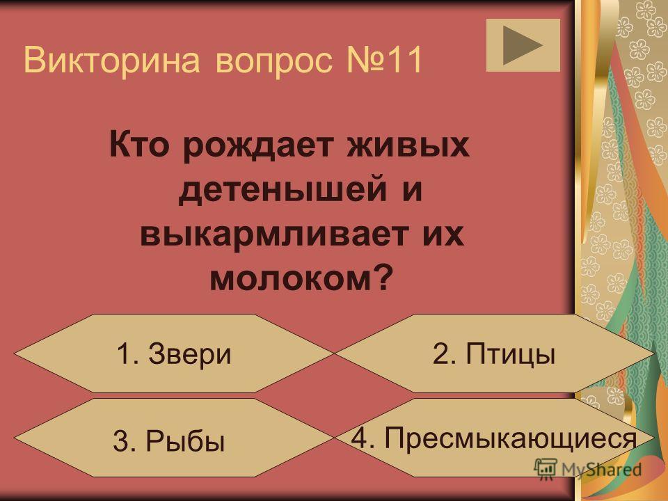 Викторина вопрос 10 Какое животное относится к рыбам? 3.Карп4. Кит 1.Дельфин2.Бегемот