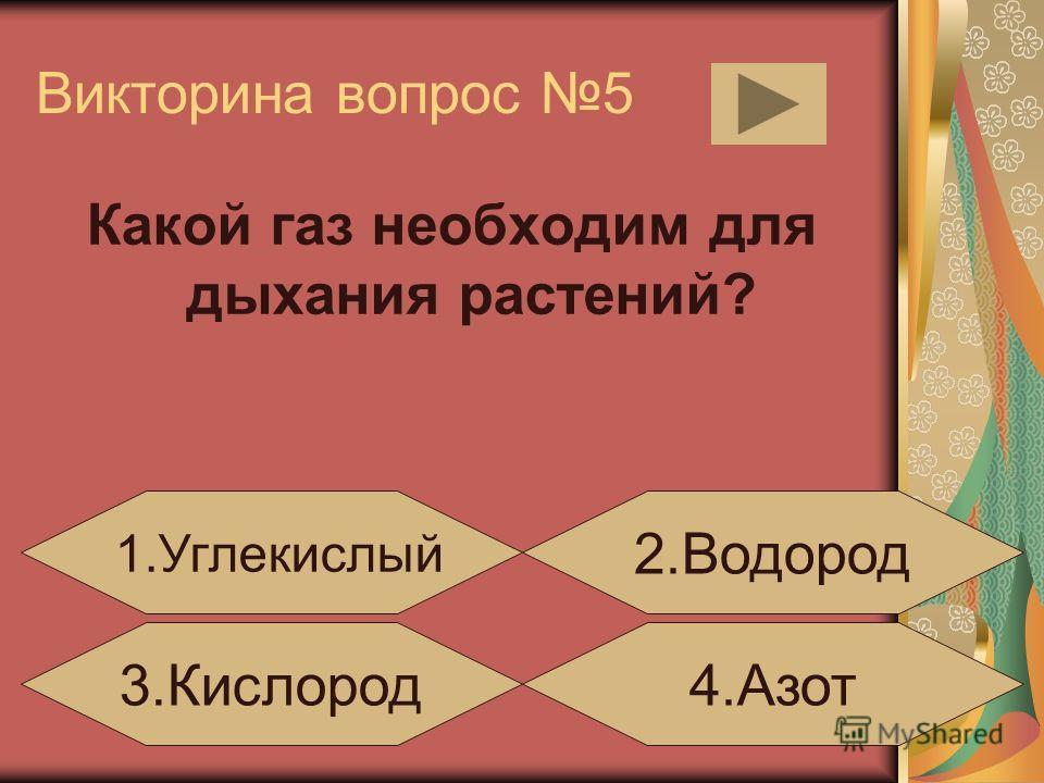 Викторина вопрос 4 Правильная цепь питания: 1. капуста-жаба-слизень 3. слизень-капуста-жаба 4. жаба-слизень-капуста 2. капуста-слизень-жаба