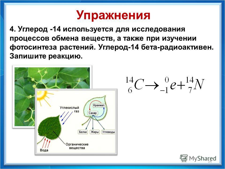 14 4. Углерод -14 используется для исследования процессов обмена веществ, а также при изучении фотосинтеза растений. Углерод-14 бета-радиоактивен. Запишите реакцию. Упражнения