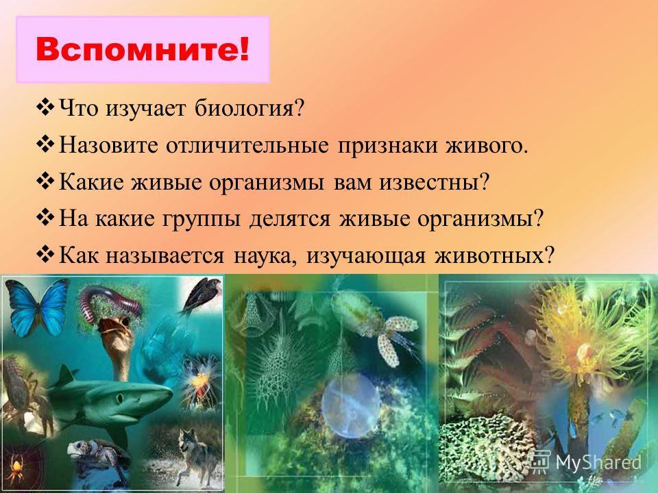 Что изучает биология? Назовите отличительные признаки живого. Какие живые организмы вам известны? На какие группы делятся живые организмы? Как называется наука, изучающая животных? Вспомните!