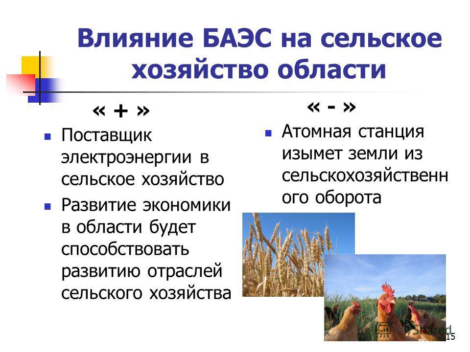 15 Влияние БАЭС на сельское хозяйство области Поставщик электроэнергии в сельское хозяйство Развитие экономики в области будет способствовать развитию отраслей сельского хозяйства Атомная станция изымет земли из сельскохозяйственн ого оборота « + » «