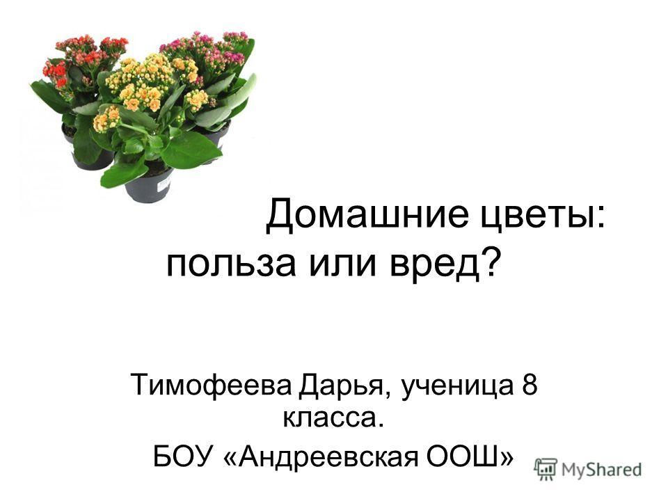 Домашние цветы: польза или вред? Тимофеева Дарья, ученица 8 класса. БОУ «Андреевская ООШ»