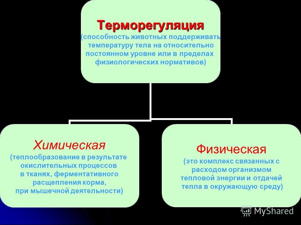Терморегуляция (способность животных поддерживать температуру тела на относительно постоянном уровне или в пределах физиологических нормативов) Химическая (теплообразование в результате окислительных процессов в тканях, ферментативного расщепления ко