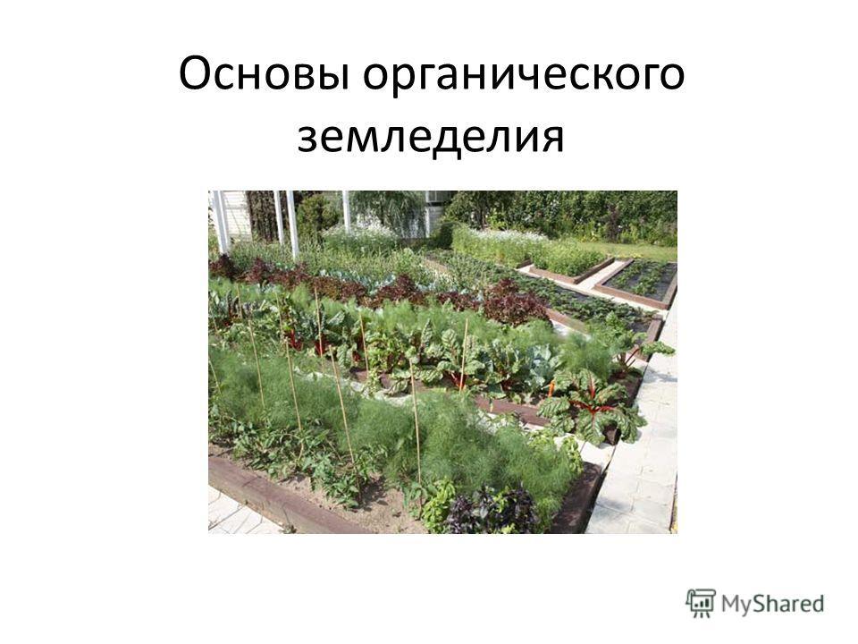 Основы органического земледелия