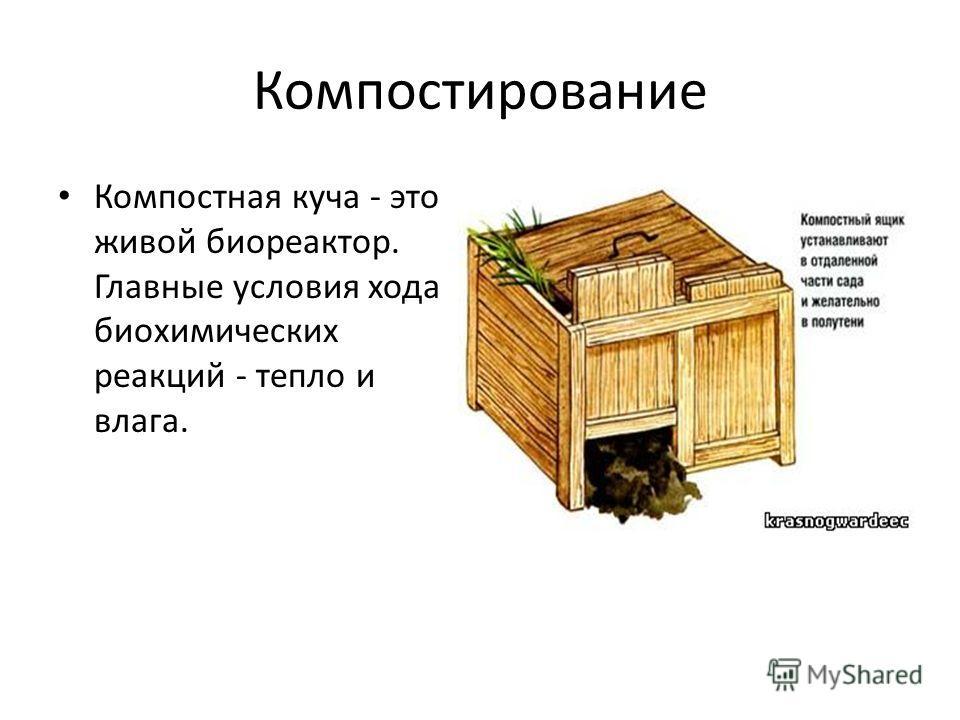 Компостирование Компостная куча - это живой биореактор. Главные условия хода биохимических реакций - тепло и влага.