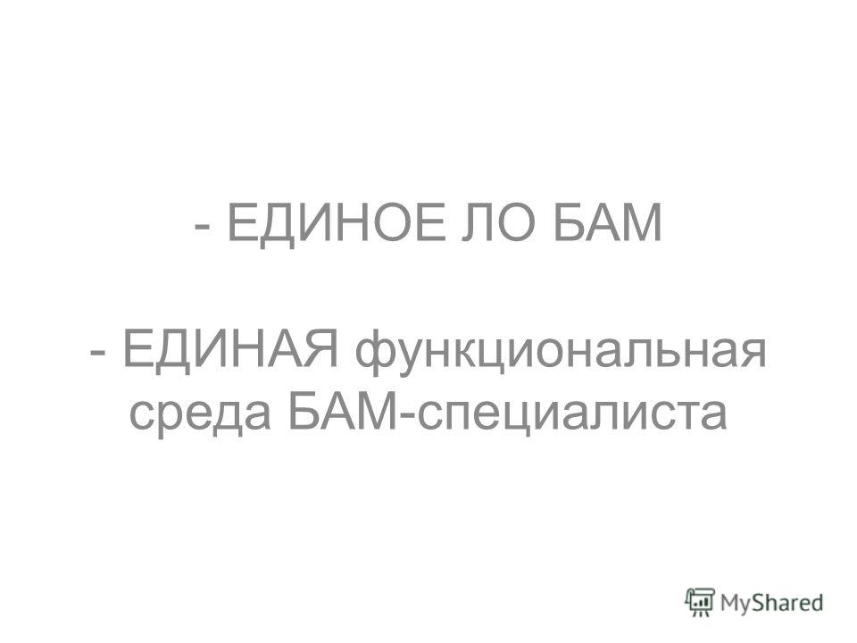 - ЕДИНОЕ ЛО БАМ - ЕДИНАЯ функциональная среда БАМ-специалиста