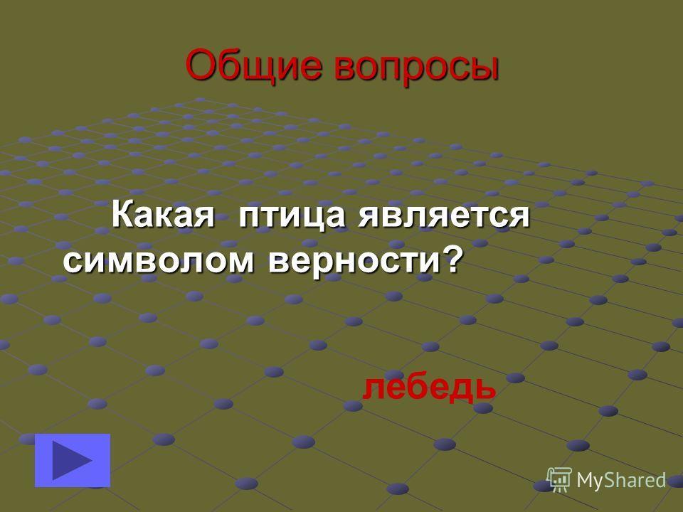 Общие вопросы Как и какие цвета чередуются на флаге Российской Федерации? Как и какие цвета чередуются на флаге Российской Федерации? Белый, синий, красный