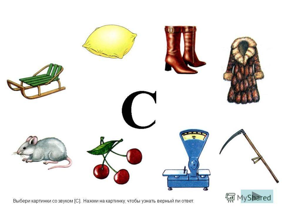 Выбери картинки со звуком [С]. Нажми на картинку, чтобы узнать верный ли ответ.