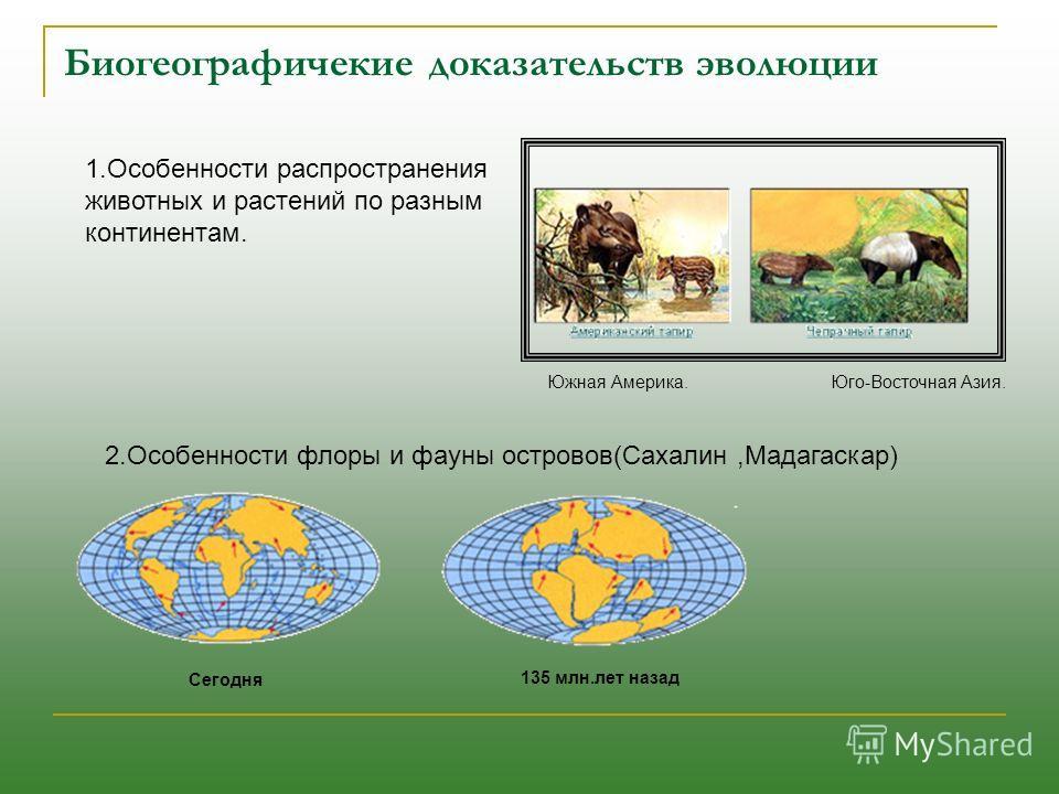 Биогеографичекие доказательств эволюции 1.Особенности распространения животных и растений по разным континентам. 2.Особенности флоры и фауны островов(Сахалин,Мадагаскар) Сегодня 135 млн.лет назад Южная Америка. Юго-Восточная Азия.