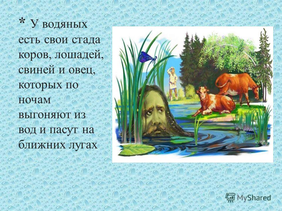 * У водяных есть свои стада коров, лошадей, свиней и овец, которых по ночам выгоняют из вод и пасут на ближних лугах