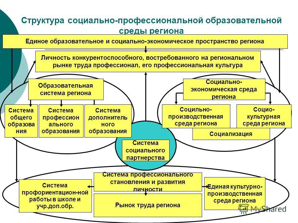 Структура социально-профессиональной образовательной среды региона Единое образовательное и социально-экономическое пространство региона Личность конкурентоспособного, востребованного на региональном рынке труда профессионал, его профессиональная кул