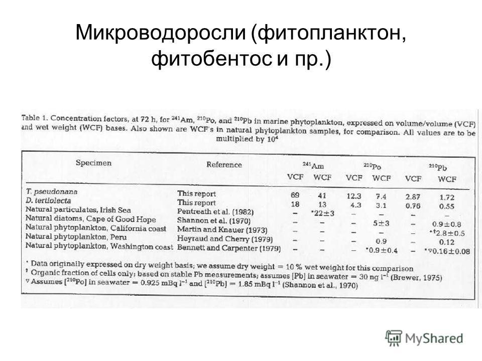 Микроводоросли (фитопланктон, фитобентос и пр.)