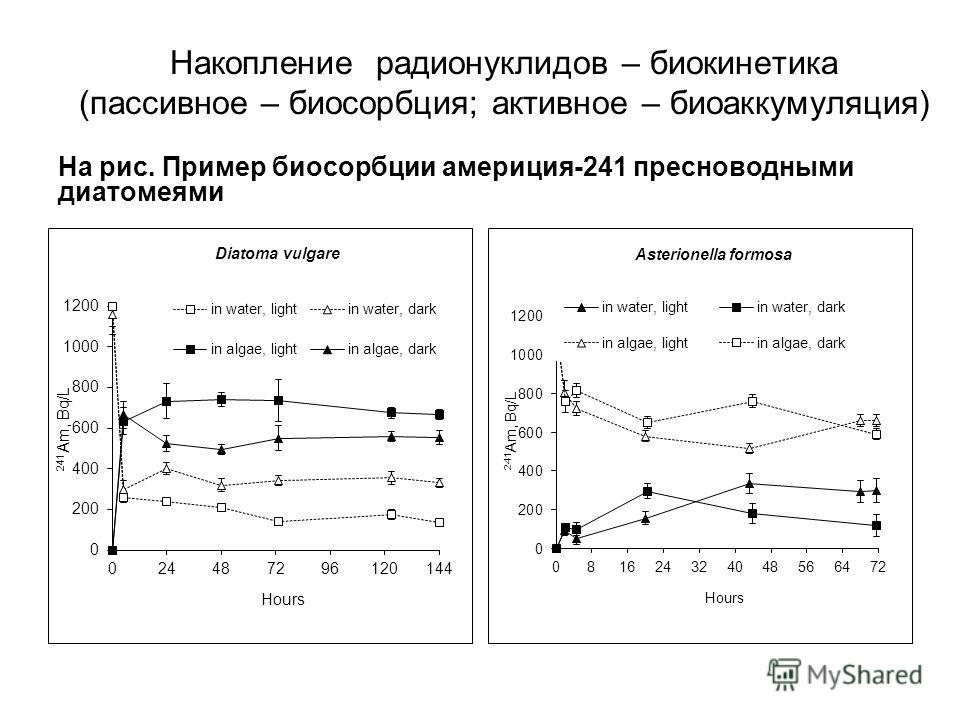 Накопление радионуклидов – биокинетика (пассивное – биосорбция; активное – биоаккумуляция) На рис. Пример биосорбции америция-241 пресноводными диатомеями
