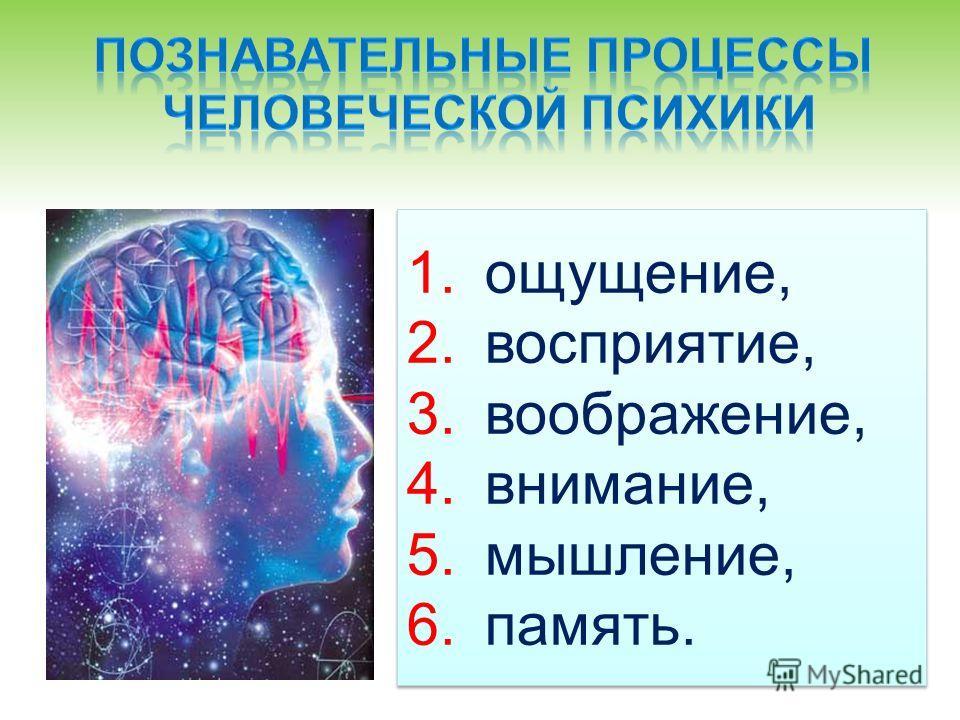 1.ощущение, 2.восприятие, 3.воображение, 4.внимание, 5.мышление, 6.память. 1.ощущение, 2.восприятие, 3.воображение, 4.внимание, 5.мышление, 6.память.
