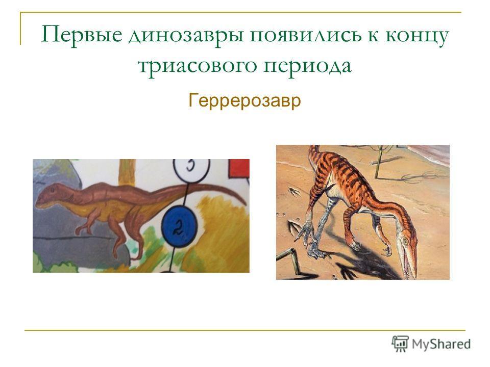 Первые динозавры появились к концу триасового периода Геррерозавр