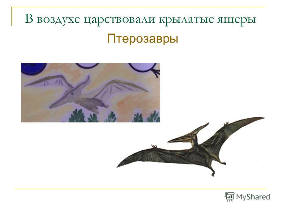 В воздухе царствовали крылатые ящеры Птерозавры