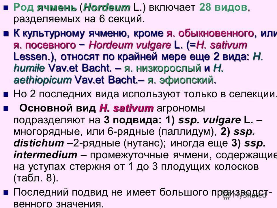 ячменьHordeum Род ячмень (Hordeum L.) включает 28 видов, разделяемых на 6 секций. К культурному ячменю, кроме я. обыкновенного, или я. посевного Hordeum vulgare L. (=H. sativum Lessen.), относят по крайней мере еще 2 вида: H. humile Vav.et Bacht. – я