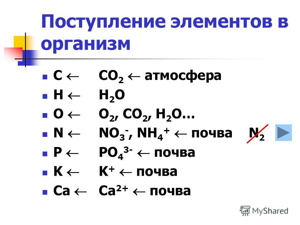 Поступление элементов в организм СО 2 атмосфера Н2ОН2О О 2, СО 2, Н 2 О… NO 3 -, NH 4 + почва N 2 PO 4 3- почва K + почва Ca 2+ почва С Н О N P K Ca