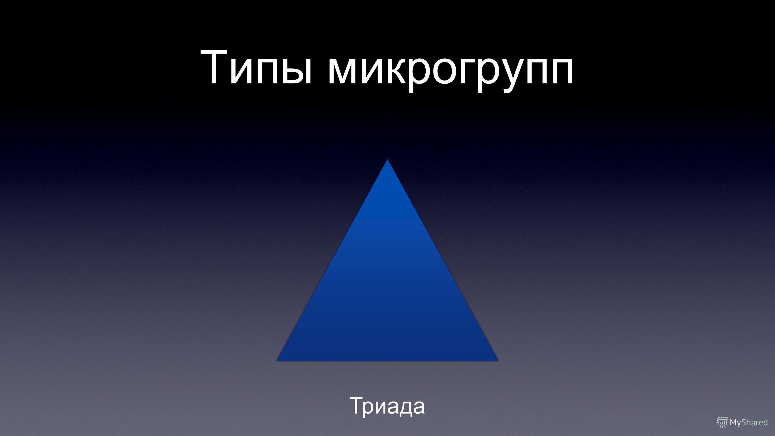 Типы микрогрупп Триада