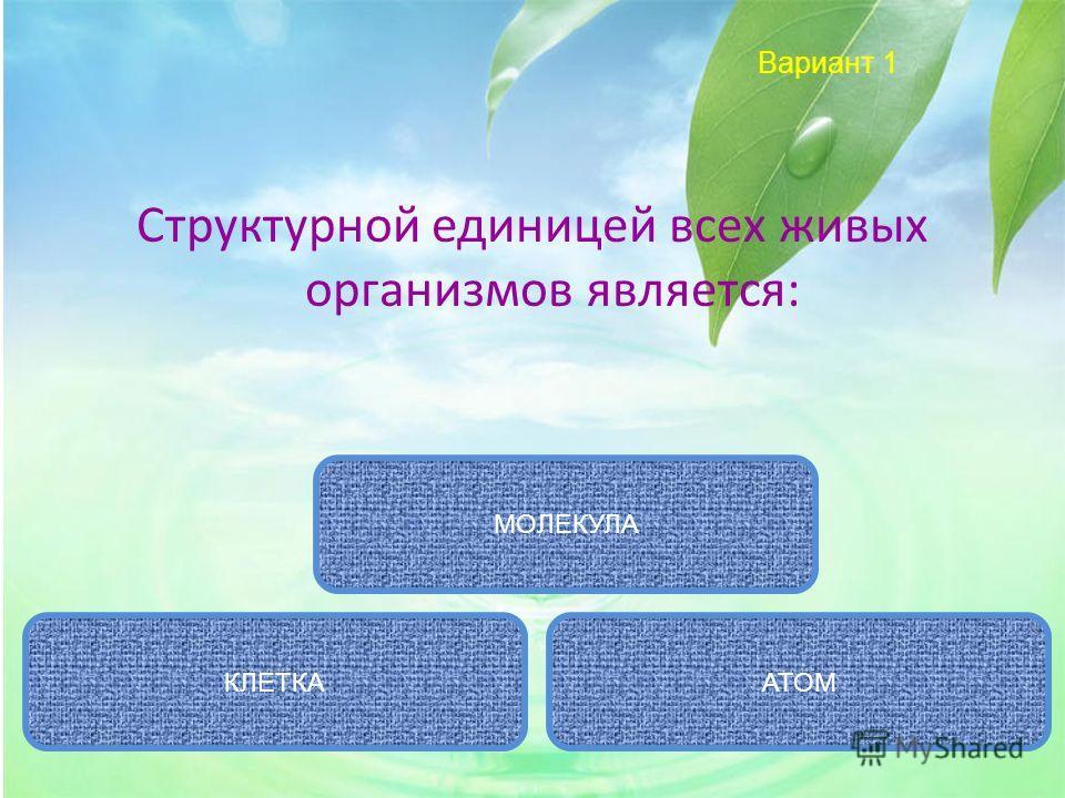 Вариант 1 Структурной единицей всех живых организмов является: КЛЕТКААТОМ МОЛЕКУЛА