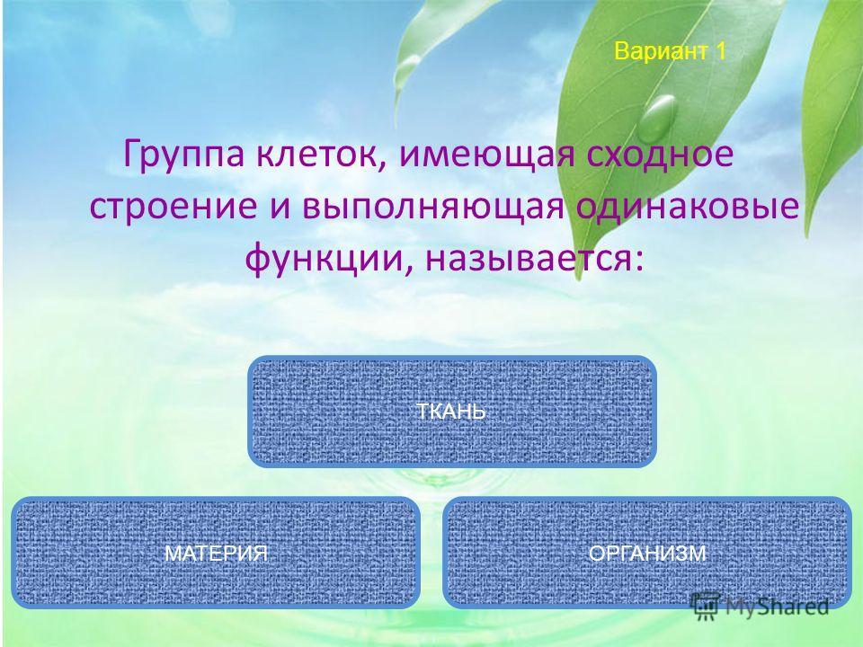 Вариант 1 Группа клеток, имеющая сходное строение и выполняющая одинаковые функции, называется: ТКАНЬ ОРГАНИЗММАТЕРИЯ