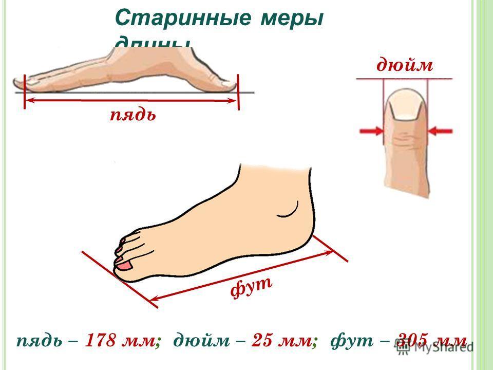 Старинные меры длины пядь – 178 мм; дюйм – 25 мм; фут – 305 мм дюйм фут пядь
